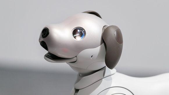 Sony bracht, na meer dan anderhalf decennium, een nieuwe versie van zijn Aibo-robothond op de markt.