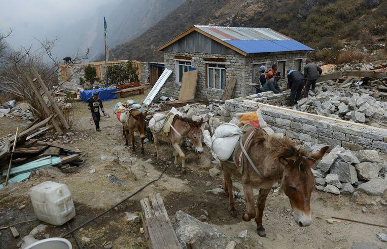 In Nepal is wel werk, zoals hier na de aardbeving in 2016. Toch zoeken veel Nepalezen werk in het buitenland. Beeld ANP