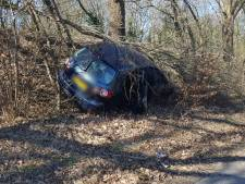 Auto raakt van de weg in Hengelo