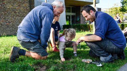 Inwoners helpen bloembollen planten voor kleurrijke graspleinen aan De Biekorf en meer biodiversiteit