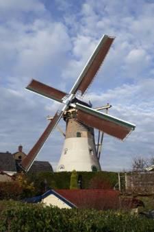 'Buren' helpen molen De Hoop bij opknapbeurt