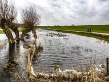 Recreatief gebruik IJsseldijk hoeft veiligheid niet in de weg te staan