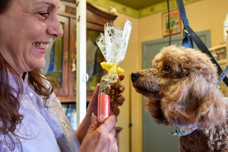 Op Werelddierendag mag er al eens een extraatje, voor Yeti een zakje lekkers