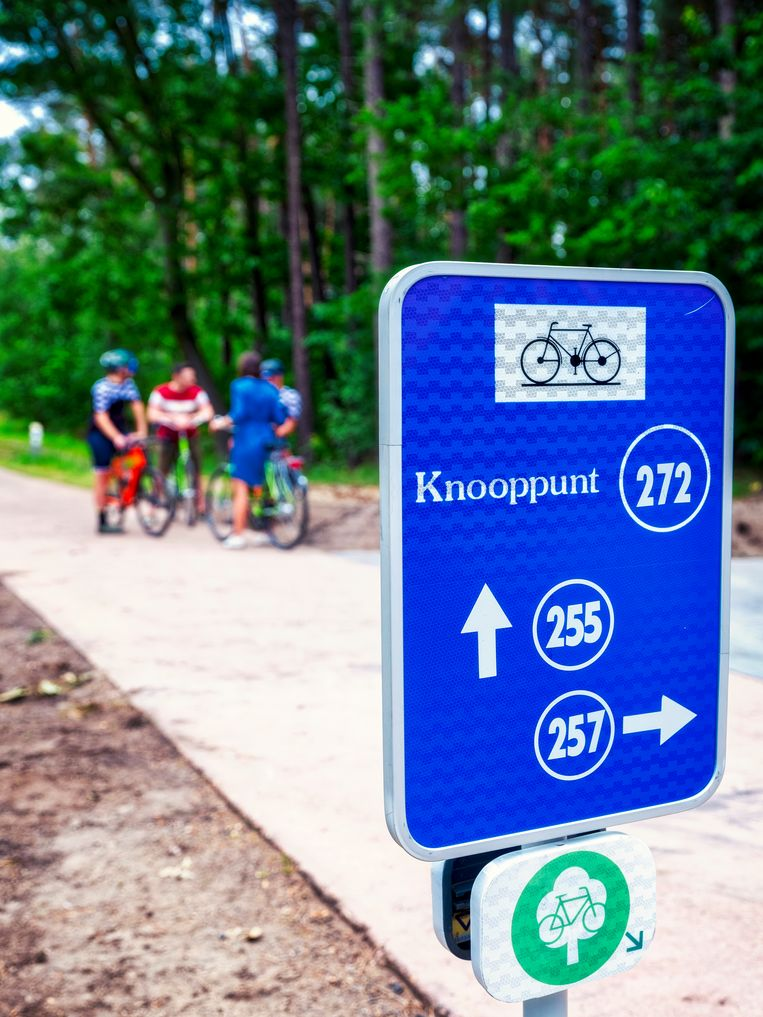 Meer dan één miljoen fietsers sprongen de voorbije zomervakantie in het zadel om Limburg te verkennen via het fietsroutenetwerk, een stijging van 11 procent.