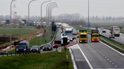 E40 vanaf Oostduinkerke afgesloten voor vrachtwagens wegens douaneacties in Frankrijk: file tot in Nieuwpoort