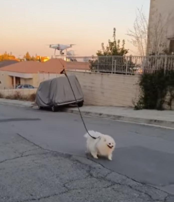 Het hondje wordt met een drone uitgelaten.