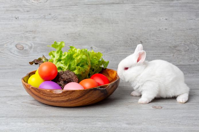 Groen en gezond moet het op de paastafel zijn.