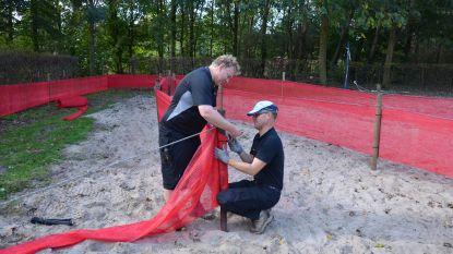 Rapencross ontvangt toppers Van Aert en van der Poel