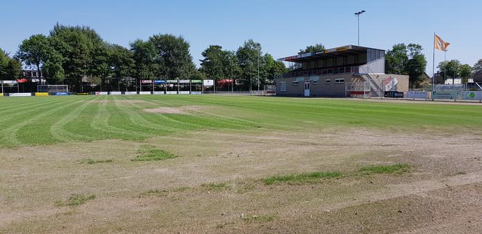 Het hoofdveld van RCS lag er vorig jaar augustus minder florissant bij. Nu durft wedstrijdsecretaris Wim Priem er een paar wedstrijden op te laten spelen.