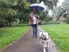 Is Bella bijna vergiftigd? Hond moest overgeven na eten verdacht gehaktballetje in Almelo's park