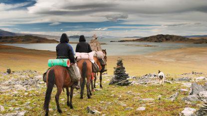 """Lezers vertellen over hun medische ervaringen in het buitenland: """"Mooi, zo'n paardrijtocht in Mongolië, maar als je valt…"""""""