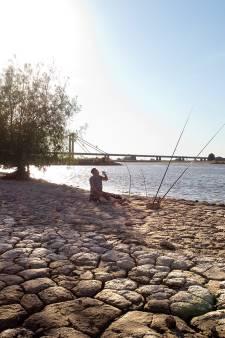 Waterschap zet zich schrap door klimaatverandering: 'De vraag naar water wordt groter en het aanbod kleiner'