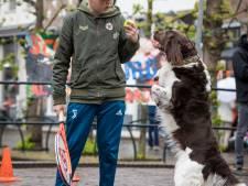 Ballen weggeven aan honden om leden te winnen in Elburg