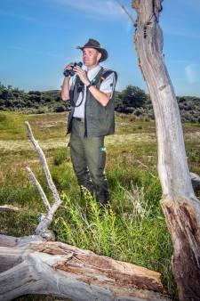 Slangen veroveren Haagse duinen: 'Het is schrikken als je er een ziet. Ze zijn stevig en zo dik als een arm'