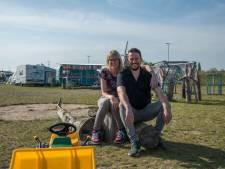 Stadscamping in Harderwijk staat voor het eerst zowaar vol