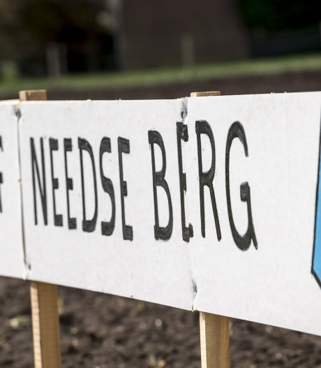 'Omstreden plan voor een rijhal en rundveehouderij op de Needse Berg kan zo niet'