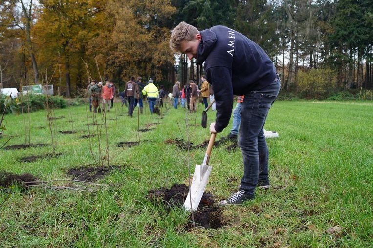 Op de Dag van de Natuur gingen in het Vagevuurbos een pak bomen de grond in.