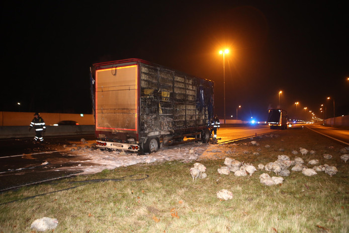 Vrachtwagen met kippen uitgebrand op A59 bij Rosmalen.