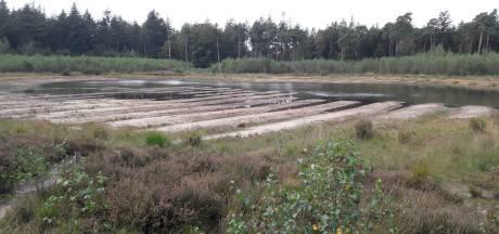 Visven in Mastbos voor de helft drooggevallen