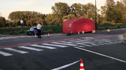 Fietser (52) overleden na aanrijding in Lot