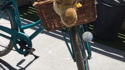 Vier fietsen gestolen van scoutskamp