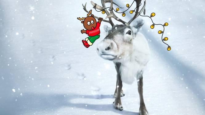 """Vanaf 19 december Lichtwandeling in stadscentrum van Aalst: """"Een coronaproof alternatief voor de kerstmarkt"""""""
