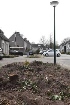 Voorzitter wijkraad Grave 'aangevallen' na kap van bomen