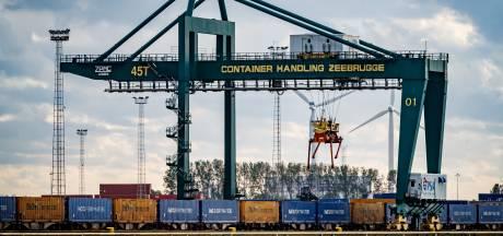 """Haven van Zeebrugge groeit ondanks coronacrisis: """"Alleen de behandeling van wagens valt enorm terug"""""""