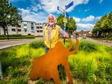 Druk verkeer en veel kleine hofjes in Bornse wijk: 'Stroom Esch zou nu heel anders worden gebouwd'