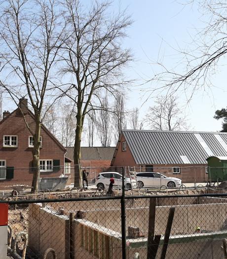 Beschermde beuken Heeswijk mogen weg