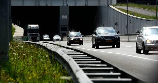 Overstekende eenden veroorzaken ernstig ongeluk op de snelweg.