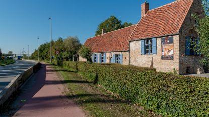 Vlaanderen moet galeriehouder 26.360 euro voor gerooide haag