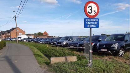 Zomerbar Soulbeach vindt oplossing voor parkeerprobleem: weide wordt extra parking