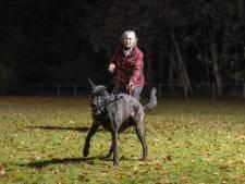 Curieuze crisis bij politiehondenvereniging in Hulshorst: twee partijen claimen bestuur te zijn