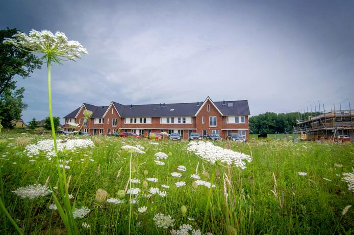 De eerste negentien huizen op Tichellande in Druten-Oost.