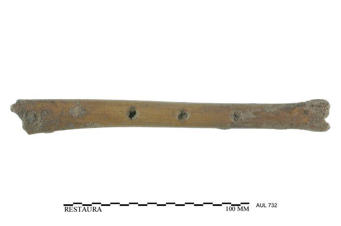 Benen fluit, gevonden in een tiende eeuwse waterput en vervaardigd uit het bot van een grote vogel
