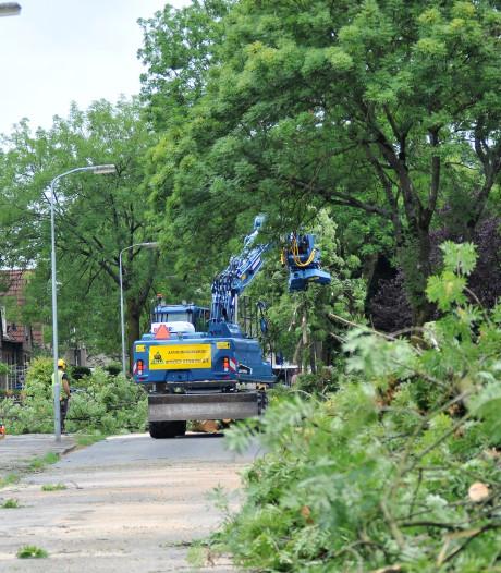 Bomen weg op Patrimoniumweg in Heelsum