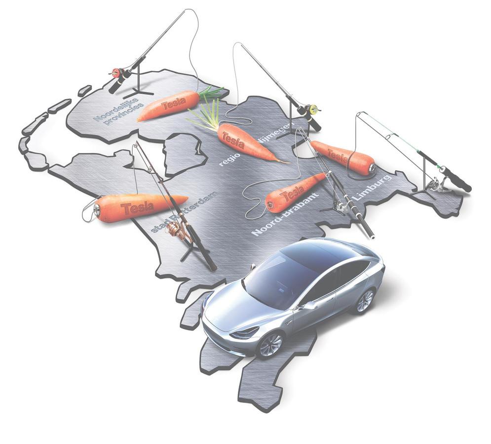 Zowel de Noordelijke provincies als Noord-Brabant, Limburg, Rotterdam en de Gelderse as Arnhem/Nijmegen hengelen opzichtig naar Teslas nieuwe gigafabriek.