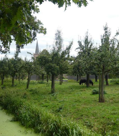 Eigenaar Huis te Jaarsveld koopt boomgaard Engelse Hoek van gemeente Lopik