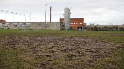 """Kluisbergen trekt 500.000 euro uit voor  kunstgrasveld aan Parklaan: """"Clubs beslissen zelf over werking, maar gemeente kiest hoe en waar ze investeert"""""""