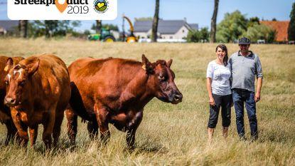 """Rundvlees van het West-Vlaams rood ras van Hof ter Wilgen: """"Die stevige dames hebben hun smaak te danken aan de vette weiden in de polders"""""""