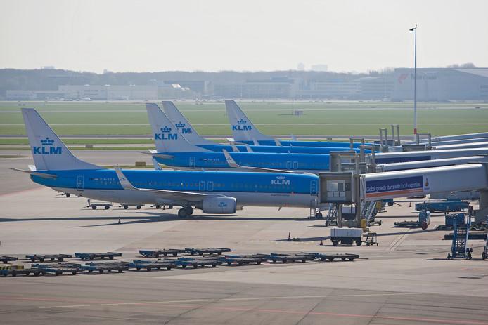 Vliegtuigen van KLM bij de gate.