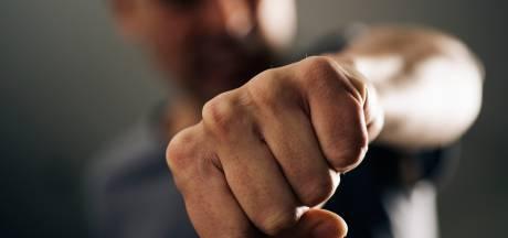 Boa's mishandeld in trein bij station Goor: 'Hij sloeg er gelijk op los'