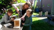 Kinderen leren vlinderhuisjes maken