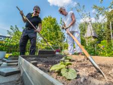 Amateurtuinders van Levenslust Delft vieren honderdjarig jubileum