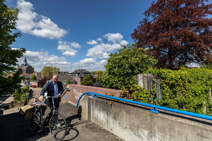 De bruine beuk (rechts) langs de A2 in Vught moet volgens de gemeente wijken voor herinrichting van het Maurickplein.