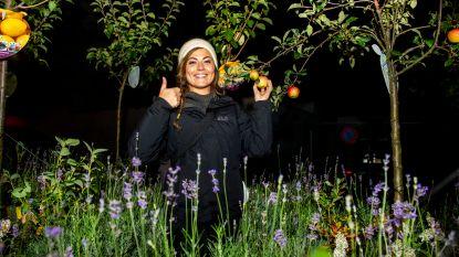 IN BEELD. Frances Lefebure verzamelt 150 vrijwilligers om ons 'bijgelovig' te maken