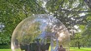 Met je bubbel in een bubbel: in dit Brusselse buitenrestaurant kan je coronaproof dineren