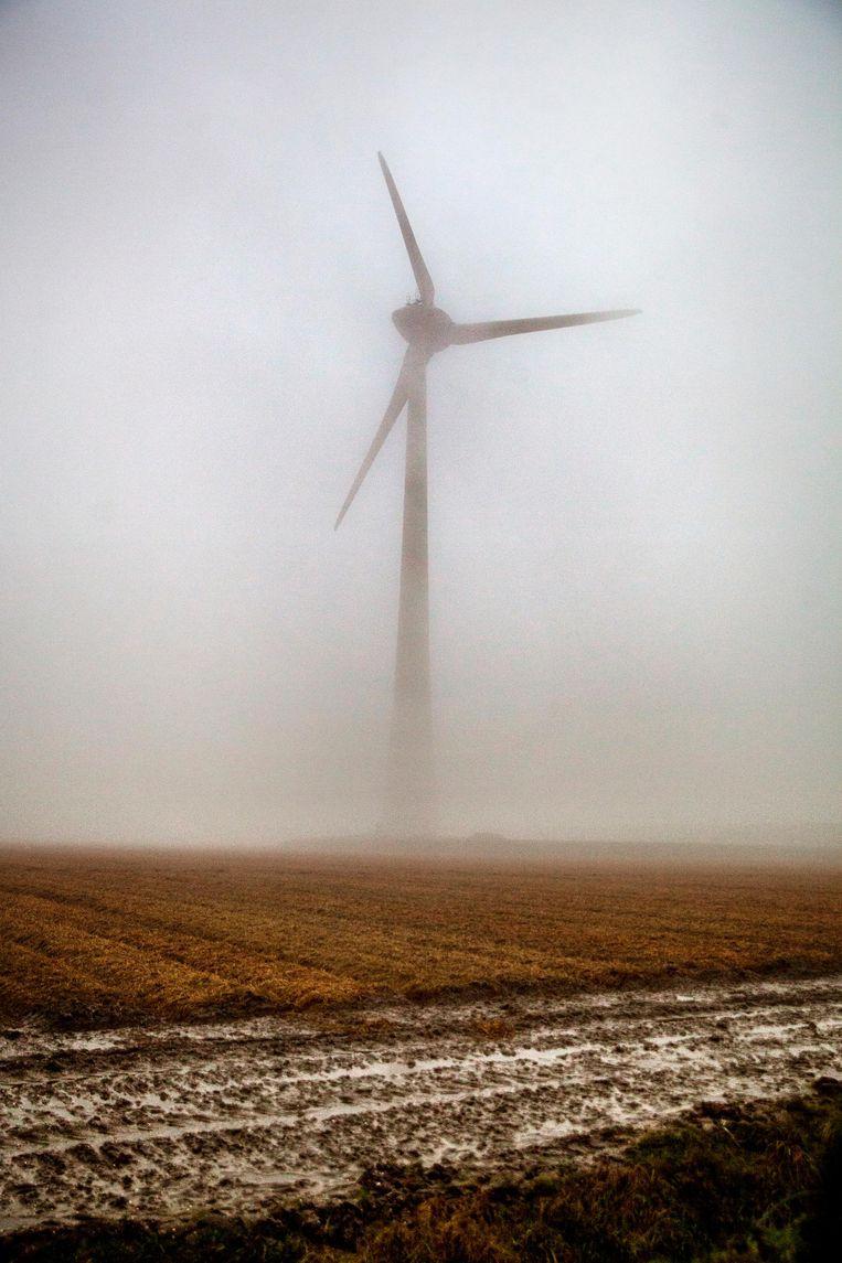 Windmolens in de Noordoostpolder Beeld Aurélie Geurts