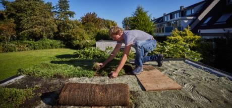 Rotterdam deelt tonnen uit voor vergroenen van tuinen en daken inwoners en instellingen
